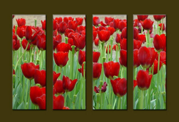 Modern Oil Paintings on canvas flower painting -set10062