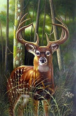 Dafen Oil Painting on canvas -animal025