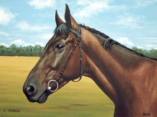 Dafen Oil Painting on canvas -horse026