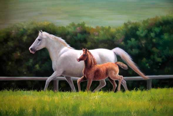 Dafen Oil Painting on canvas -horse033