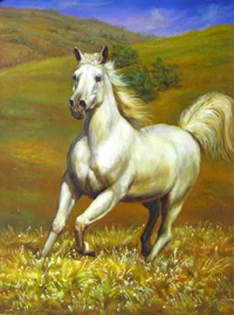 Dafen Oil Painting on canvas -horse035