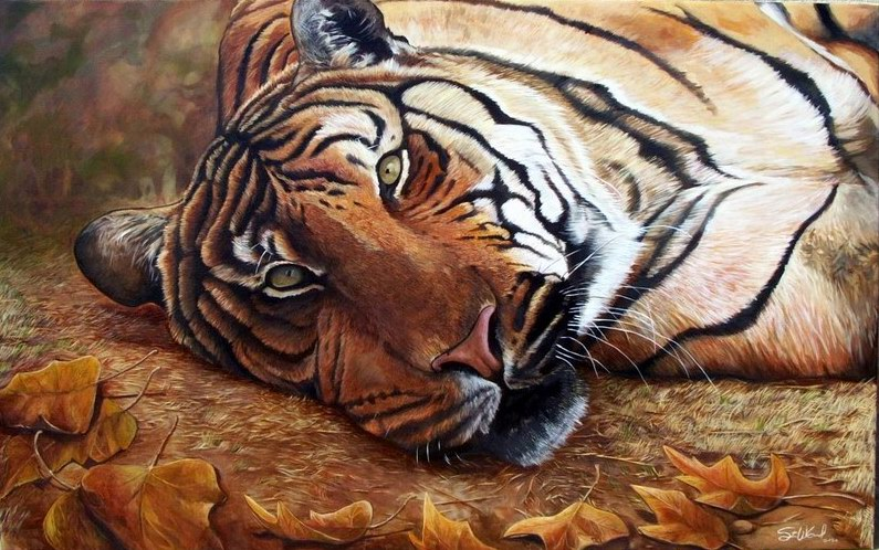 Dafen Oil Painting on canvas -tiger03